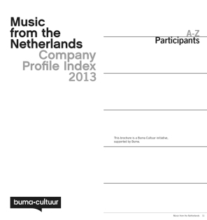 buma cultuur Midem-boekje 2013.